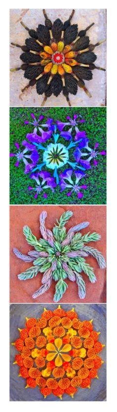 flower mandalas © kathy klein