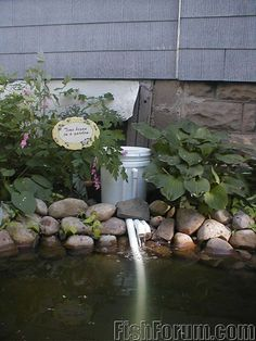 DIY filter for a pond using a 5gal bucket