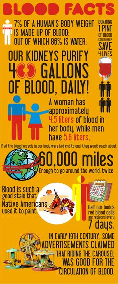 Facts About Blood - Infographic Medical Facts, Medical Science, Medical Posters, Science Biology, Science Facts, Fun Facts, Science Week, Hematology, Medical Laboratory