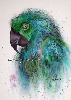PARROT 5x7 print from original home decor by valdasfineart on Etsy