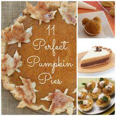 PERFECT Pumpkin Pies!