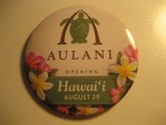 Aulani Disney Resort  you have to gO !