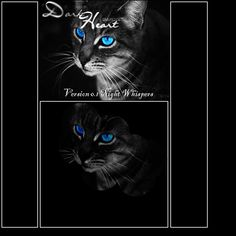 warrior cats clans - Google Search