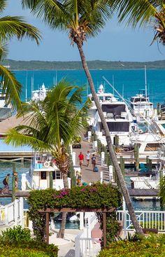 Cape Eleuthera Marina Bahamas Takes Boats Up To - Cape eleutheras luxury town homes bahamas