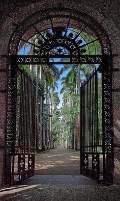 Secret Garden    Botanical Garden, Rio de Janeiro, Brazil #betterthanbraziltaxi   #BrazilAirportTransfers http://brazilairporttransfers.com 1-800-617-6398