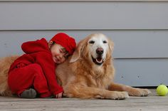 What Is The Best Family Dog?