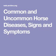 Common and Uncommon Horse Diseases, Signs and Symptoms