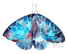 mmmmng, maruti-bitamin:   Moths twitter | instagram