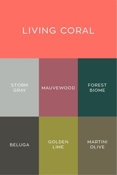 PANTONE Color of the Year 2019 Living Coral &; Willowdale Estate PANTONE Color of the Year 2019 Living Coral &; Coral Colour Palette, Pantone Colour Palettes, Color Palate, Pantone Color, Coral Color, Palette Pantone, Pantone Green, Spring Color Palette, Mauve Color