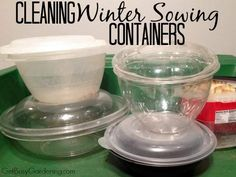 Learn how to find winter sowing containers that can be reused year after year, and how to easily clean your winter sowing containers for quick reuse.