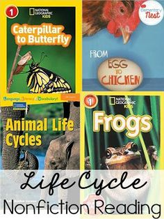 Life Cycles Reading- Educational Ideas and Teaching Ideas for life cycles. Anchor charts, reading, resources, and technology to help teach this science topic in first and second grade classrooms. Primary Science, Science Notes, Science Topics, Kindergarten Science, Science Lessons, Life Science, Science Activities, Nonfiction Activities, Primary Teaching