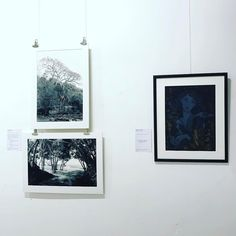Our #botanicaexhibition is now open! There's a fantastic bunch of affordable pieces of art in this show including these lovelies by Romy River (left) and Rebecca Loury (right). We are just in the process of adding photos of all the pieces to our Facebook page including prices and artist details so check it out!