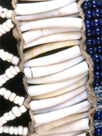 Detail of dentalium wedding veil ca 1875, Klickitat tribe