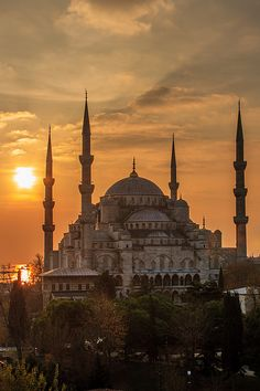 Blue Mosque | David Curry | Flickr