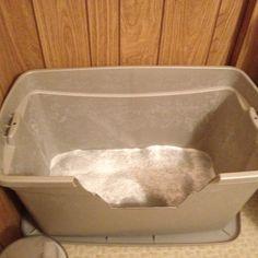 Do It Yourself Cheap Mess-Free Cat Litter Box | Litter box, Cat ...