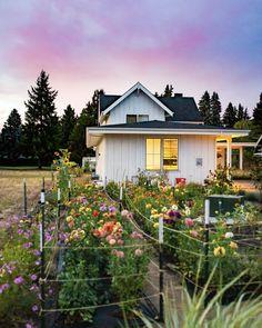 Flower Garden Layouts, Cut Flower Garden, Beautiful Flowers Garden, Flower Gardening, Flower Farm, Flowers For Cutting Garden, Cut Garden, Flower Garden Plans, Beautiful Home Gardens