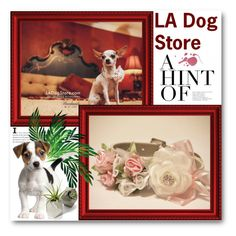 LA Dog Store by ladogstores on Polyvore featuring polyvore, fashion, style and clothing
