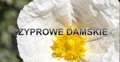 Perfumy szyprowe damskie Federico Mahora.pdf
