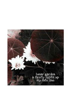 Haiku, Google Drive, Picsart, Competition, Japan, Illustration, Movie Posters, Self, Film Poster