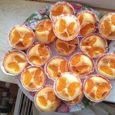 Mandarinen - Kokos - Muffins 29
