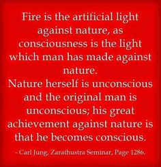 Fire is the artificial light against nature, as consciousness is the light which man has made against nature. ~Carl Jung, Zarathustra Seminar, Page 1286.