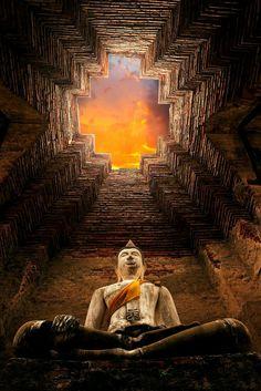 Buda de Ayutthaya, Tailandia.