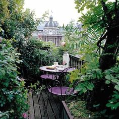 Lush green on this fantastic balcony in the city.