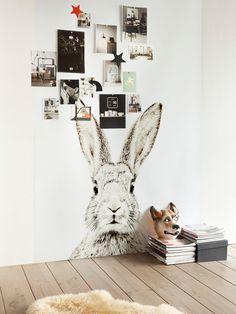 Magna Rabbit Wallpaper
