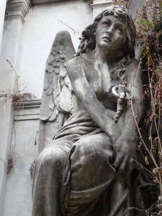 Angel - Achingly Beautiful Cemetary Art