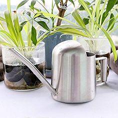 Arrosoir en Acier Inoxydable 500ML: Amazon.fr: Jardin Pots, Watering Can, Amazon Fr, Bonsai, Canning, Gardens, Watering Cans, Stainless Steel, Bonsai Trees