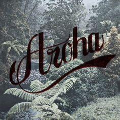 Aroha Native by House of Aroha Homeland, Nativity, Neon Signs, House, Maori, Home, The Nativity, Homes, Birth