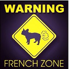 """Click visit site and Check out Cool """"French Bulldog"""" T-shirts. This website is superb. Tip: You can search """"your name"""" or """"your favorite shirts"""" at search bar on the top. What you Wish your french bull dog Would Pledge to You  We do not have a doorbell. I will not bark each time I hear one on TV.  I will not play tug-of-war with Dad's underwear while he's on the toilet.  The garbage collector is not stealing our stuff....(I'll let it go...let it go...)  I do not need to suddenly stand…"""