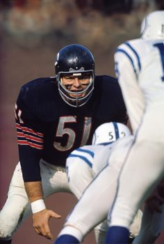 Dick Butkus of the Chicago Bears before a snap by the Baltimore Colts at Wrigley Field. Chicago, Illinois 11/7/1965