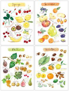 Fruit print set - In english