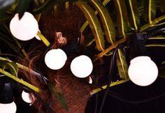 Oświetlenie ogrodowe led, żarówki, łańcuch