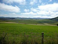 Weintouren Neuseeland - Neuseeland Weinreisen- Individuelle Weinreisen durch Neuseeland