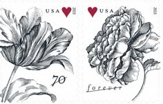 The U.S. Postal Service has launched Vintage Rose and Tulip Stamps.