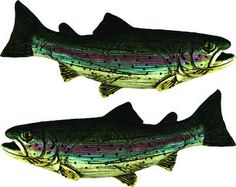 Trout Drawer Pulls 2 pack