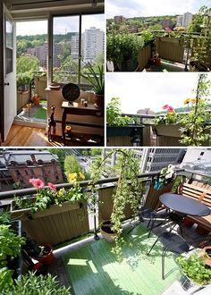 My balcony garden: the heart of my home is my balcony garden