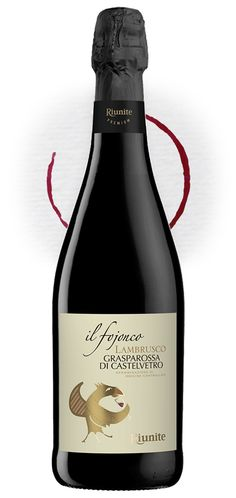 "Redesign of ""Fojonco"", Lambrusco DOC for Wine Recipes, Packaging Design, Drinks, Bottle, Food, Wine, Beverages, Flask, Essen"