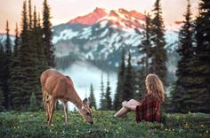 Vancouver-based photographer Elizabeth Gadd captures the beauty of getting lost in nature. The photographer, who first discovered her passion Potnia Theron, Vancouver, Lightroom, Nature Verte, Foto Art, Jolie Photo, Adventure Is Out There, Adventure Awaits, Beautiful World