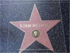 In memory of Robin Williams, star on Hollywood Walk of Fame. #lorisgolfshoppe Repinned by lorisgolfshoppe.com