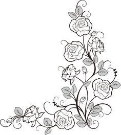 Rose fine