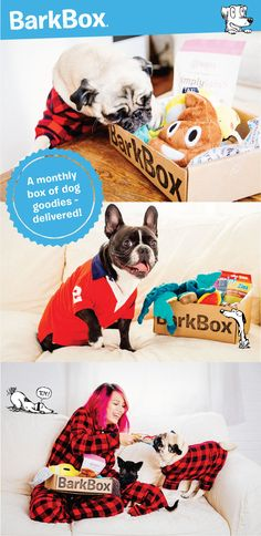 $1 FIRST BOX SPAWCIAL: Pay $1 for your first BarkBox today and as little as $20 per month for the remainder of your plan. No additional shipping fees. To redeem, click through this pin and sign up for a 6 or 12 month plan. BarkBox delivers a monthly themed box of curated all-natural doggy treats and fun toys to your door. It's a pawsome experience for you and your pup. Plans can be customized for big or small dogs, heavy chewers, and pups with allergies. Most of all, it just makes dogs…