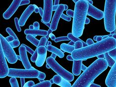 """Whether we realize it or not, every one of us has an individually unique microbial eco-system in and on us, a """"microbiome,"""" which is home to more than 100 trillion microbes. Sounds like a lot, doesn't it? In fact,"""