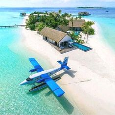 Which friends would you take with you on a loney island ? • Follow ! • Photo b
