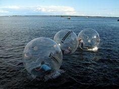 """Walk water balls"" Alster in Hamburg, Germany."