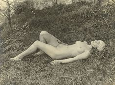 Barnard (London)     Nude in Meadow     1930 (ca)