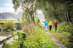 wondermooie wandelingen in het bos - Libelle Weekender, Tiny House, Vineyard, Hiking, Country Roads, World, City, Outdoor, Travelling