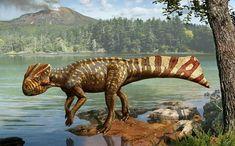 Los diez dinosaurios más raros descubiertos en los últimos años